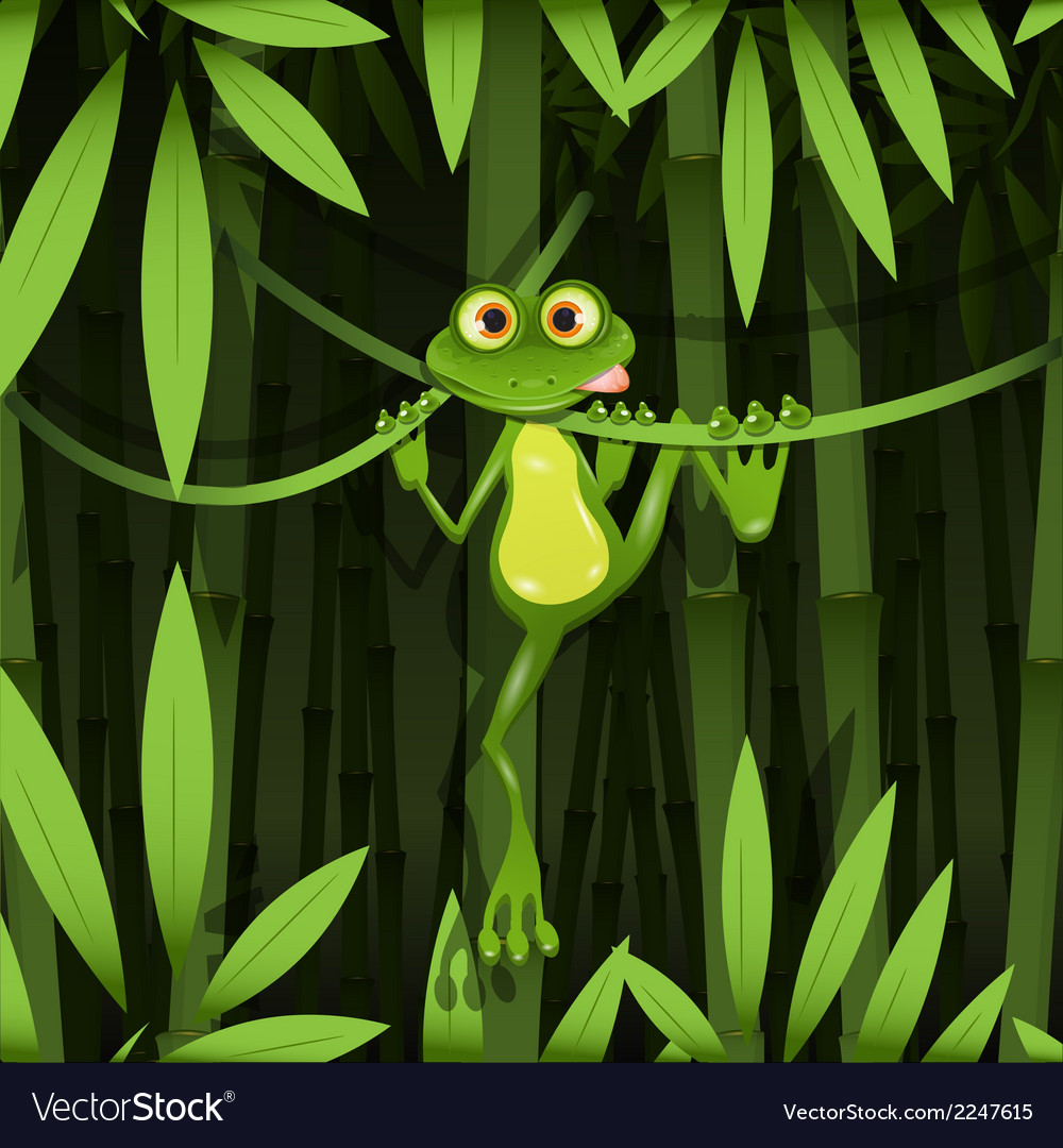 Frog in a jungle vector | Price: 3 Credit (USD $3)