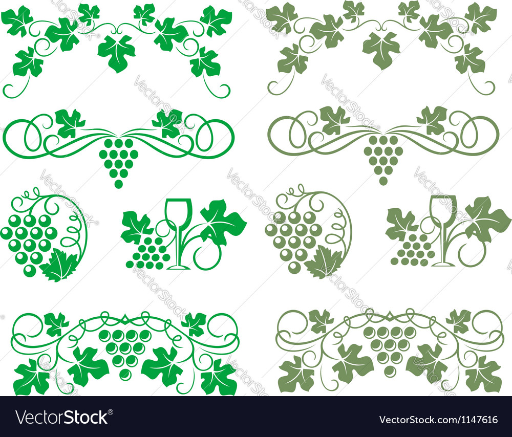 Grape swirls and elements vector | Price: 1 Credit (USD $1)