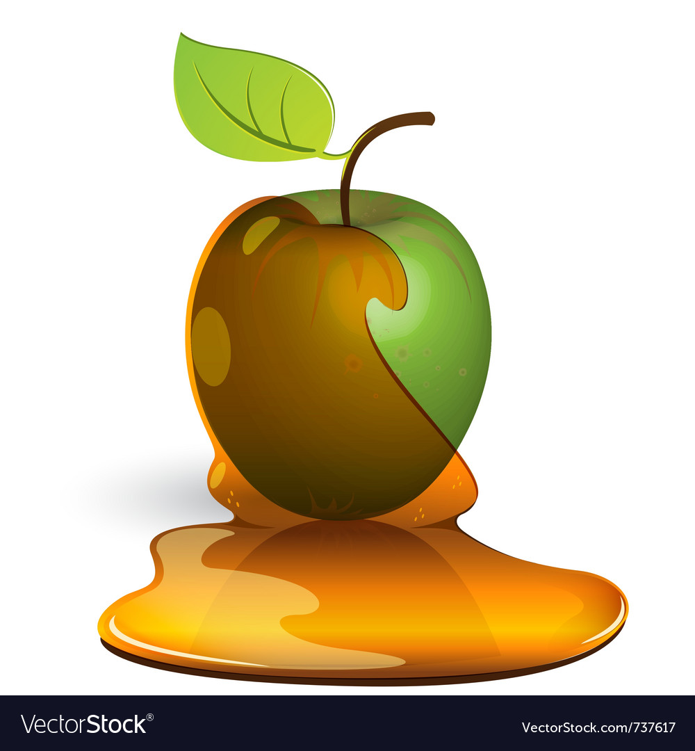 Green apple in honey vector