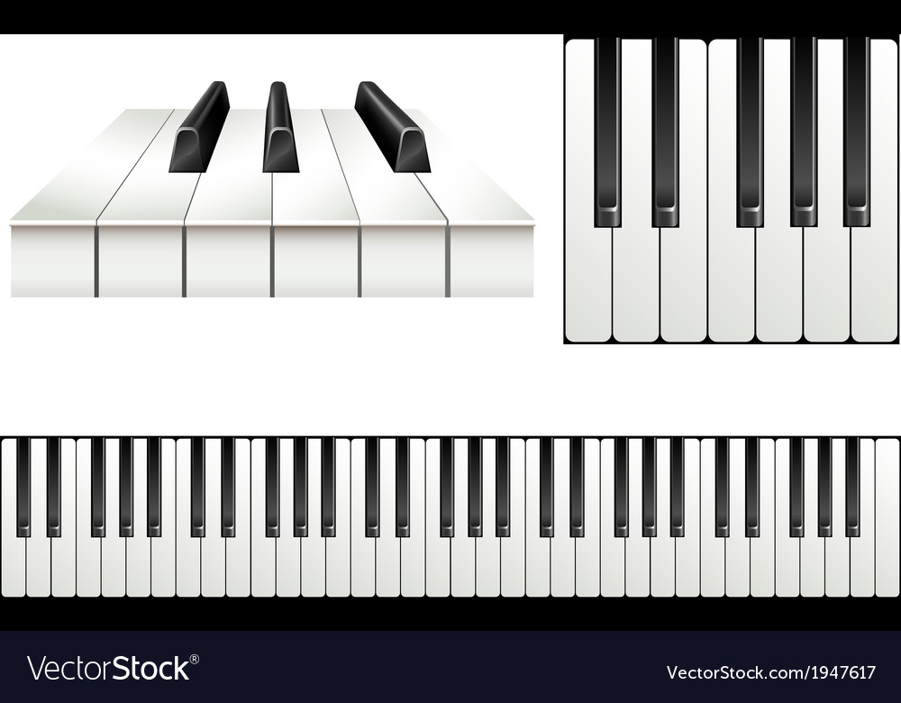 Piano key set vector | Price: 1 Credit (USD $1)