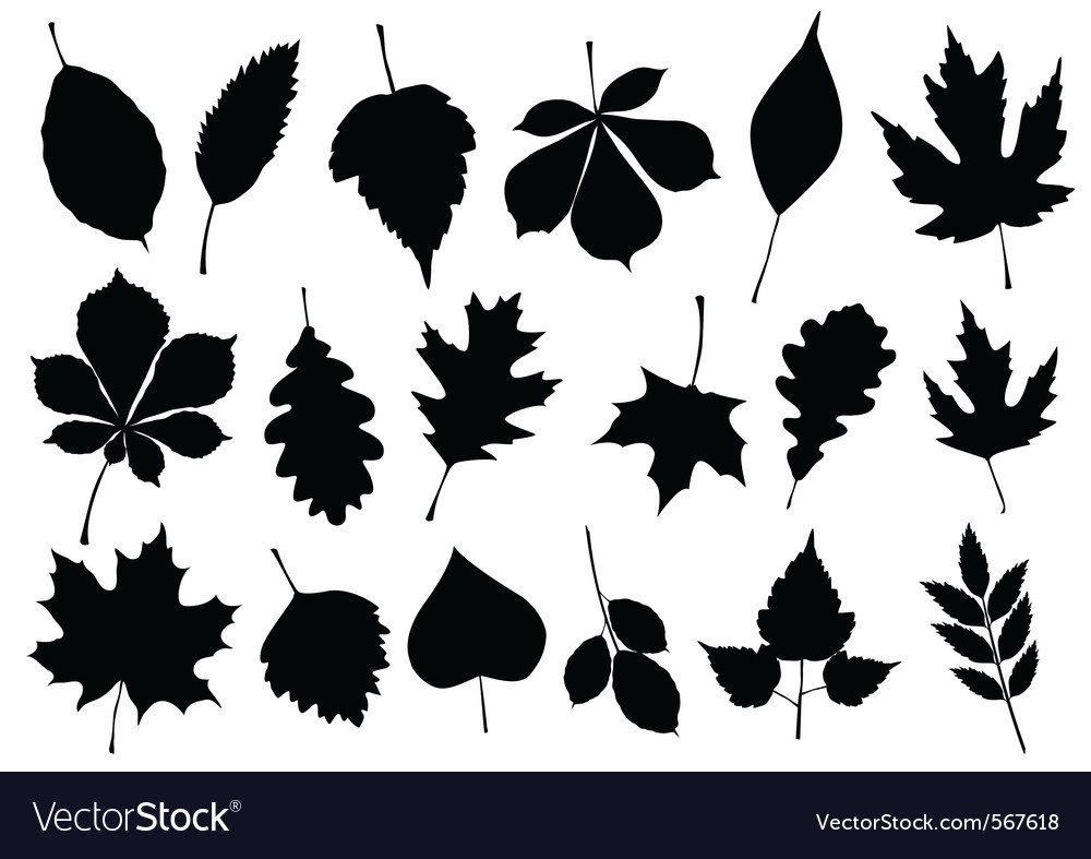 Autumn leaf silhouettes vector | Price: 1 Credit (USD $1)