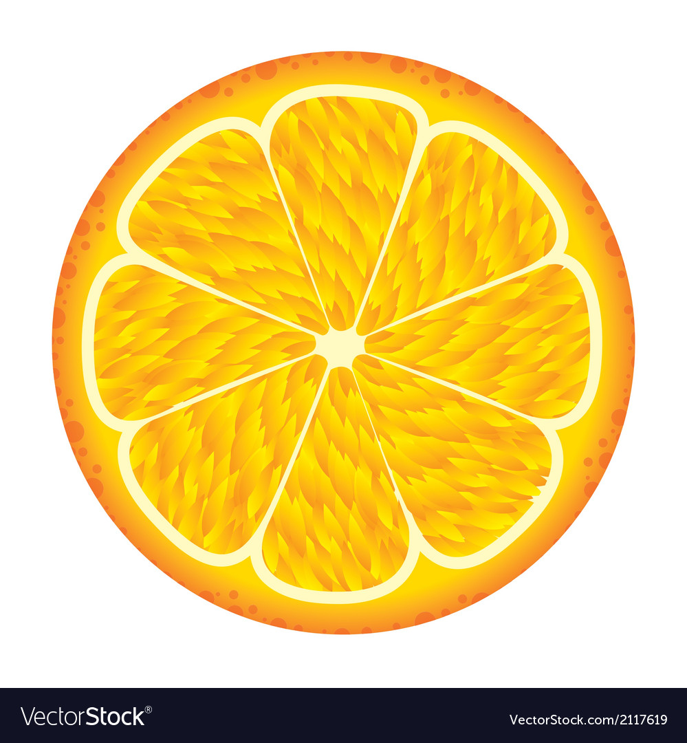 Orange fruit vector | Price: 1 Credit (USD $1)