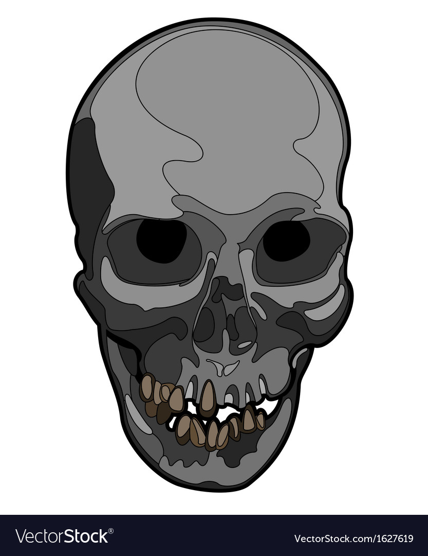 Skull artwork vector | Price: 1 Credit (USD $1)