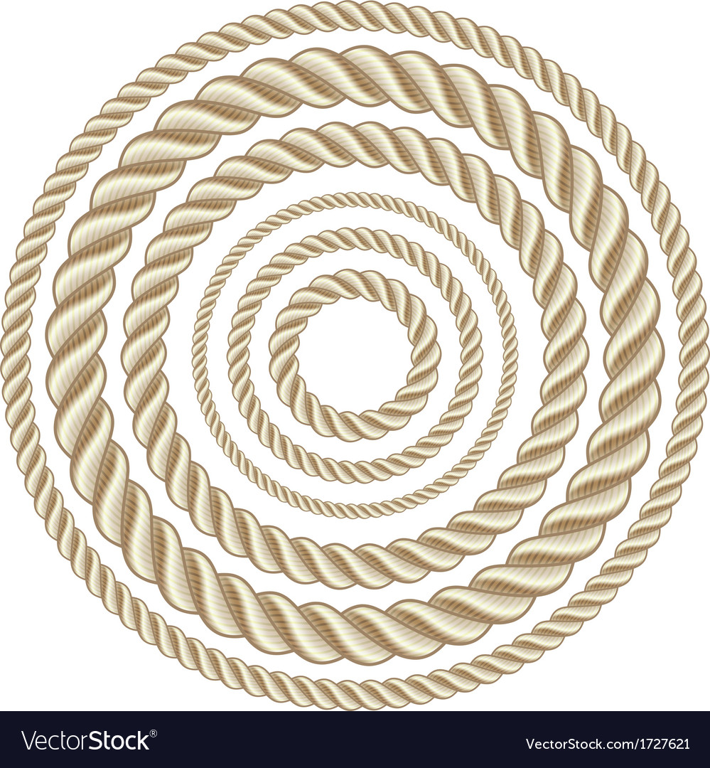 Circle ropes vector | Price: 1 Credit (USD $1)