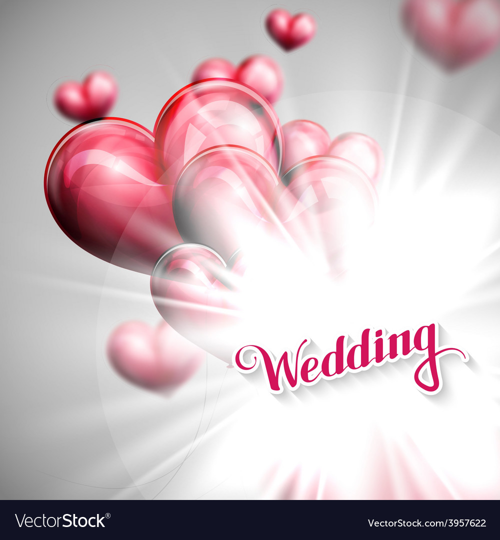 Holiday of wedding label with vector | Price: 1 Credit (USD $1)