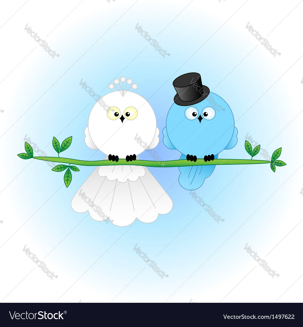 Stylish bride groom birds vector | Price: 1 Credit (USD $1)