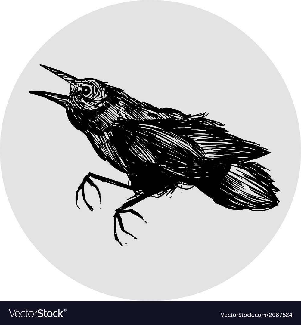 Black crow vector | Price: 1 Credit (USD $1)