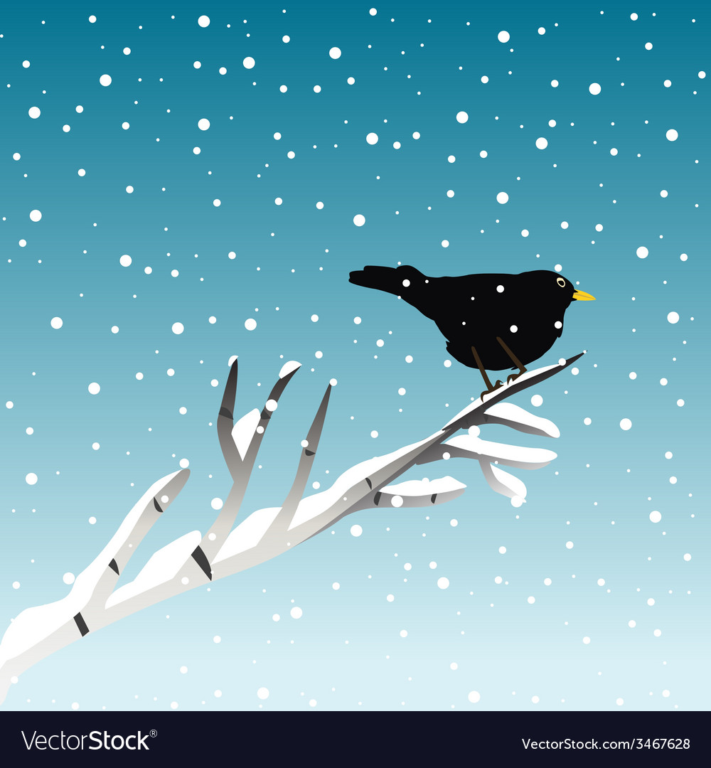 Winter with blackbird on branch vector | Price: 1 Credit (USD $1)