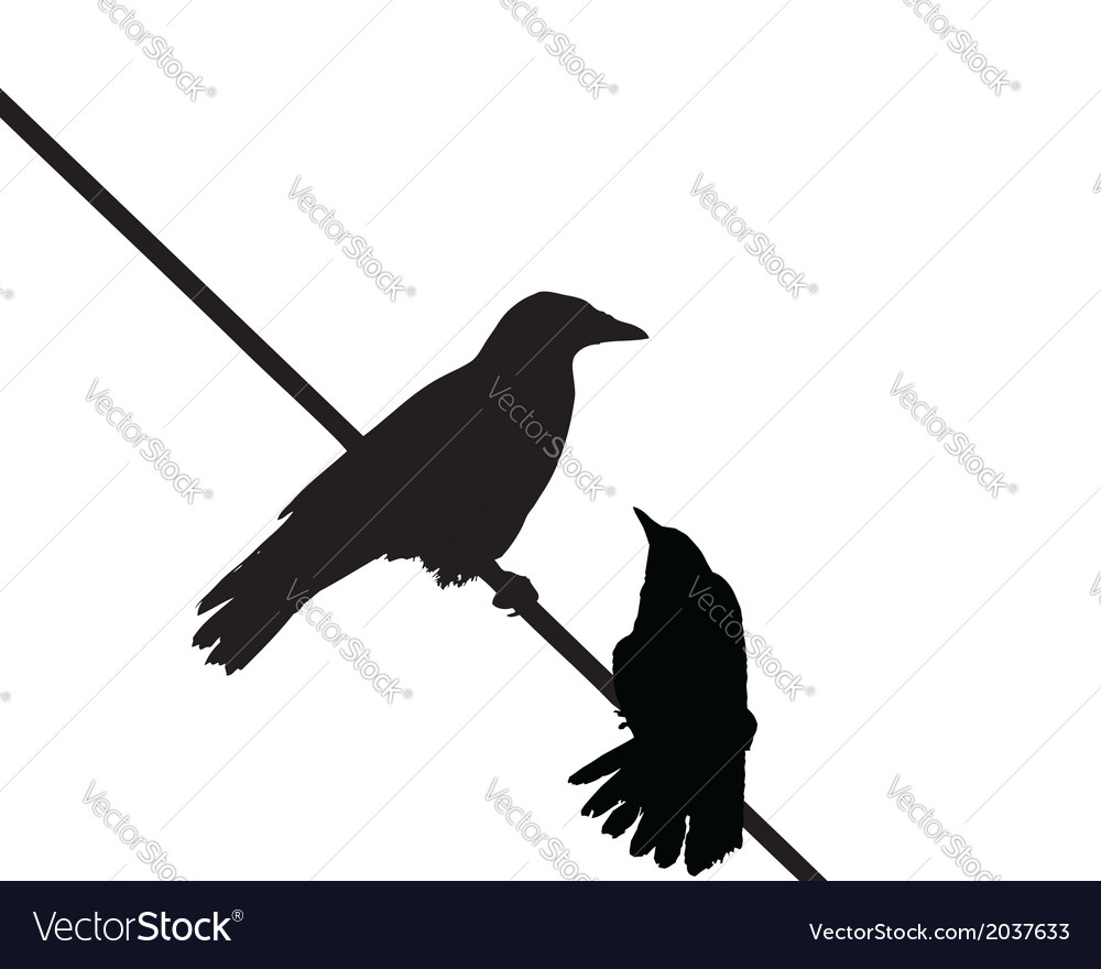 Crows wire vector | Price: 1 Credit (USD $1)