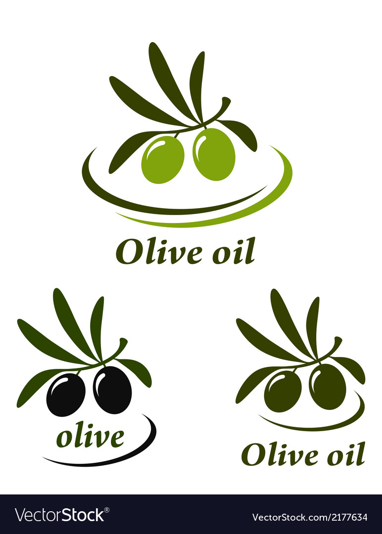 Colorful olive set vector | Price: 1 Credit (USD $1)