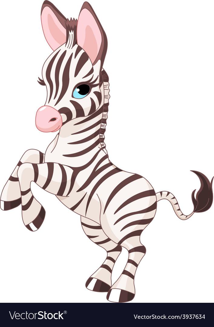 Cute baby zebra vector | Price: 3 Credit (USD $3)