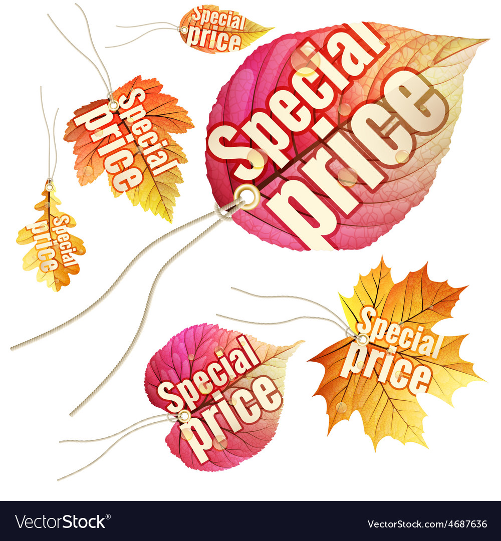 Set of autumn sale tags eps 10 vector | Price: 3 Credit (USD $3)