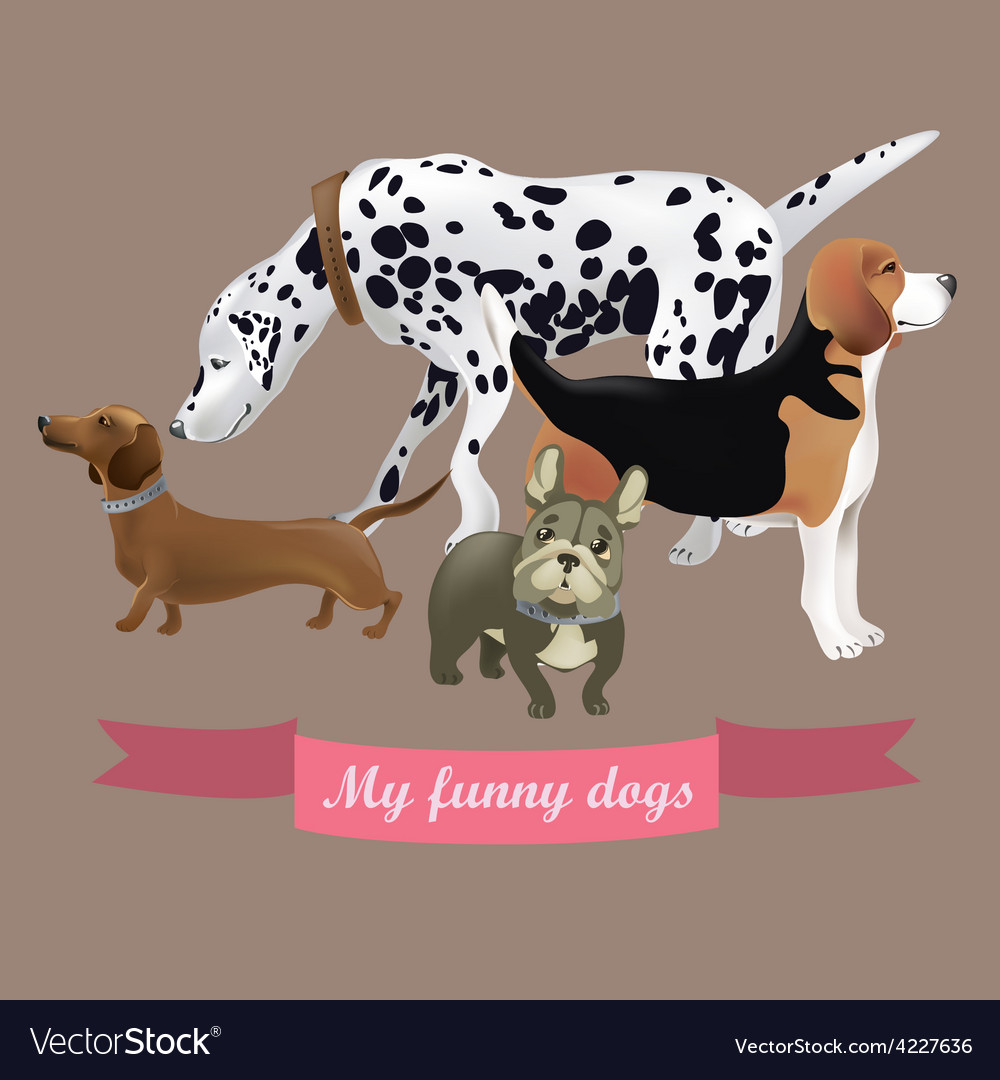 Set of funny cartoon dogs vector | Price: 3 Credit (USD $3)