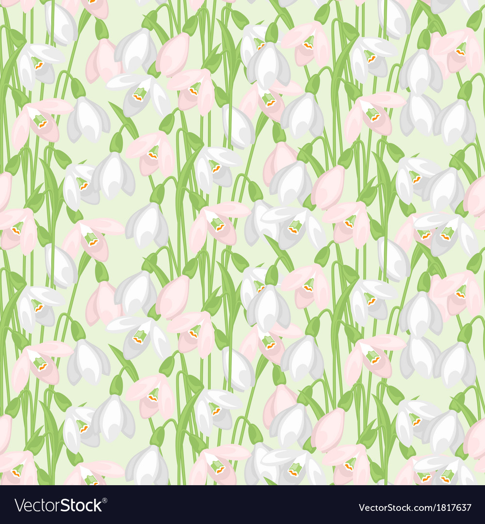 Spring flowers snowdrops natural seamless pattern vector | Price: 1 Credit (USD $1)