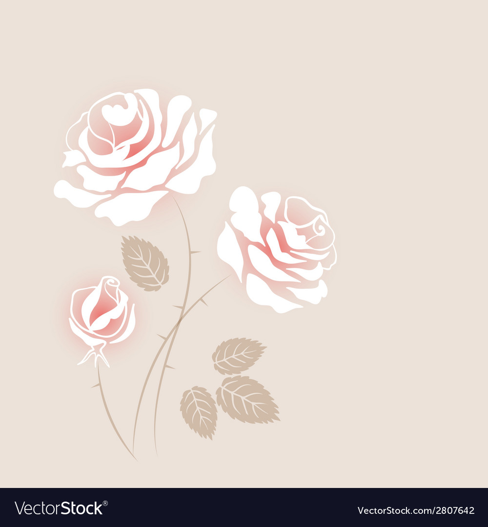 Delicate vintage card with some white roses vector | Price: 1 Credit (USD $1)