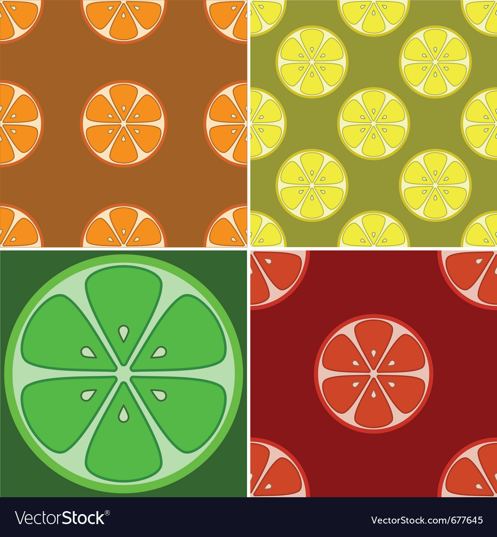 Backgrounds citrus fruit vector | Price: 1 Credit (USD $1)