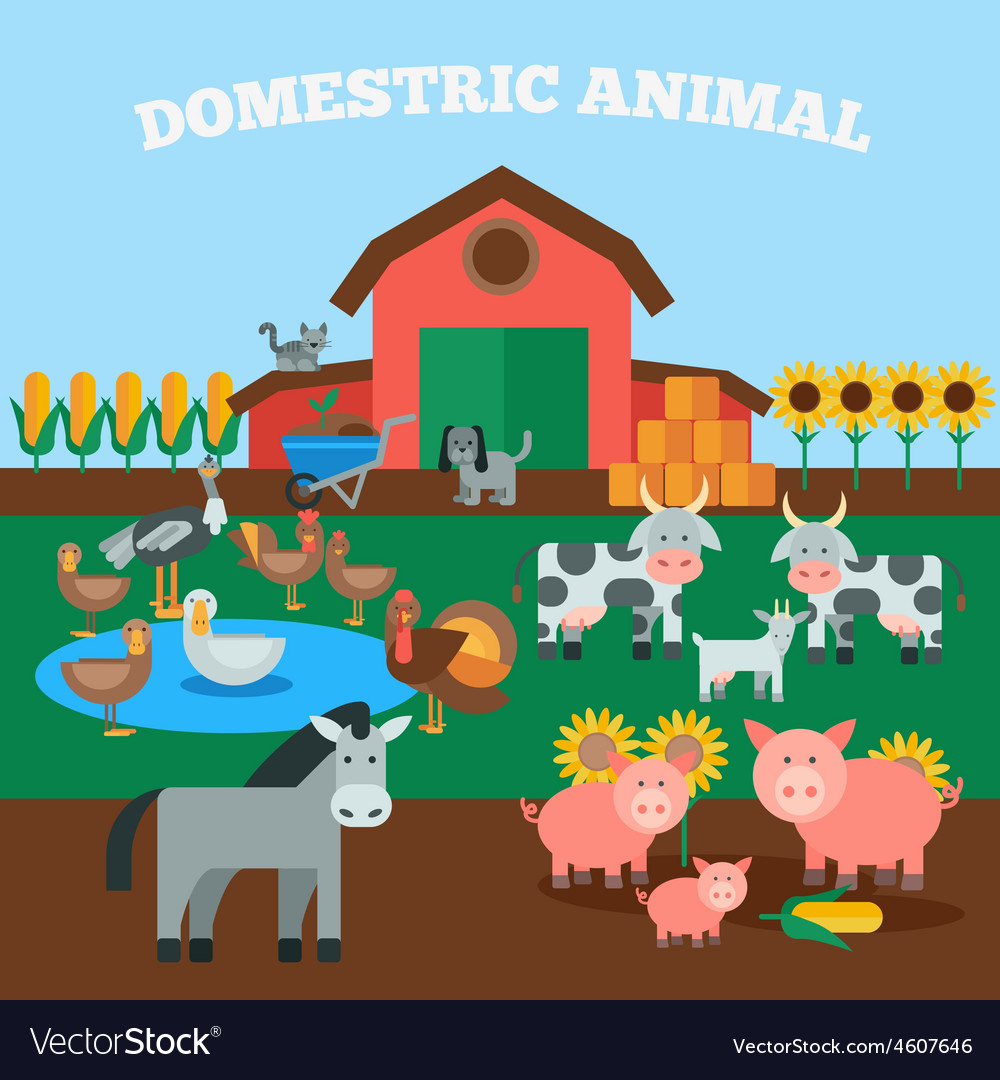 Domestic animals concept vector | Price: 1 Credit (USD $1)
