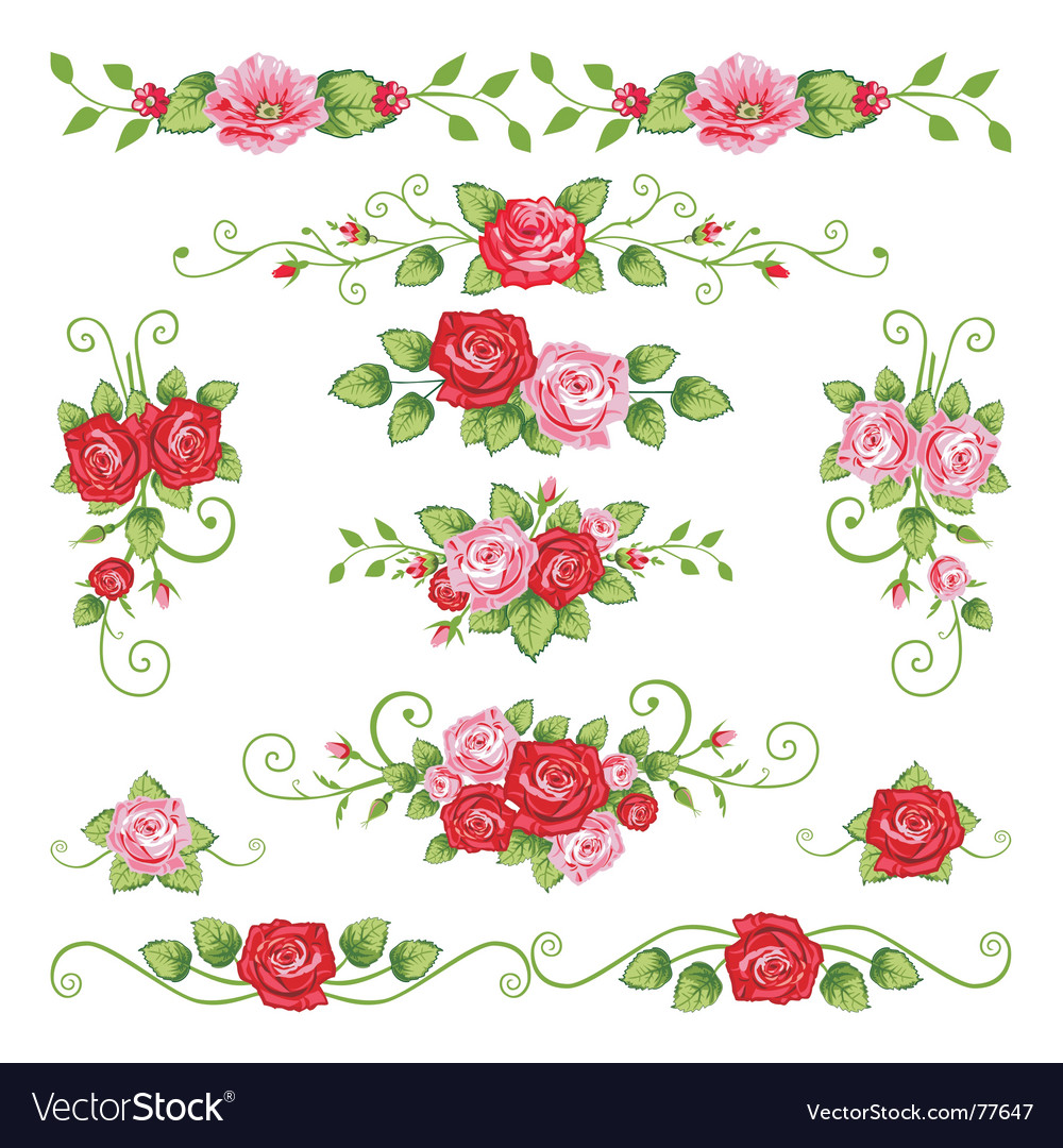 Roses collection vector | Price: 1 Credit (USD $1)