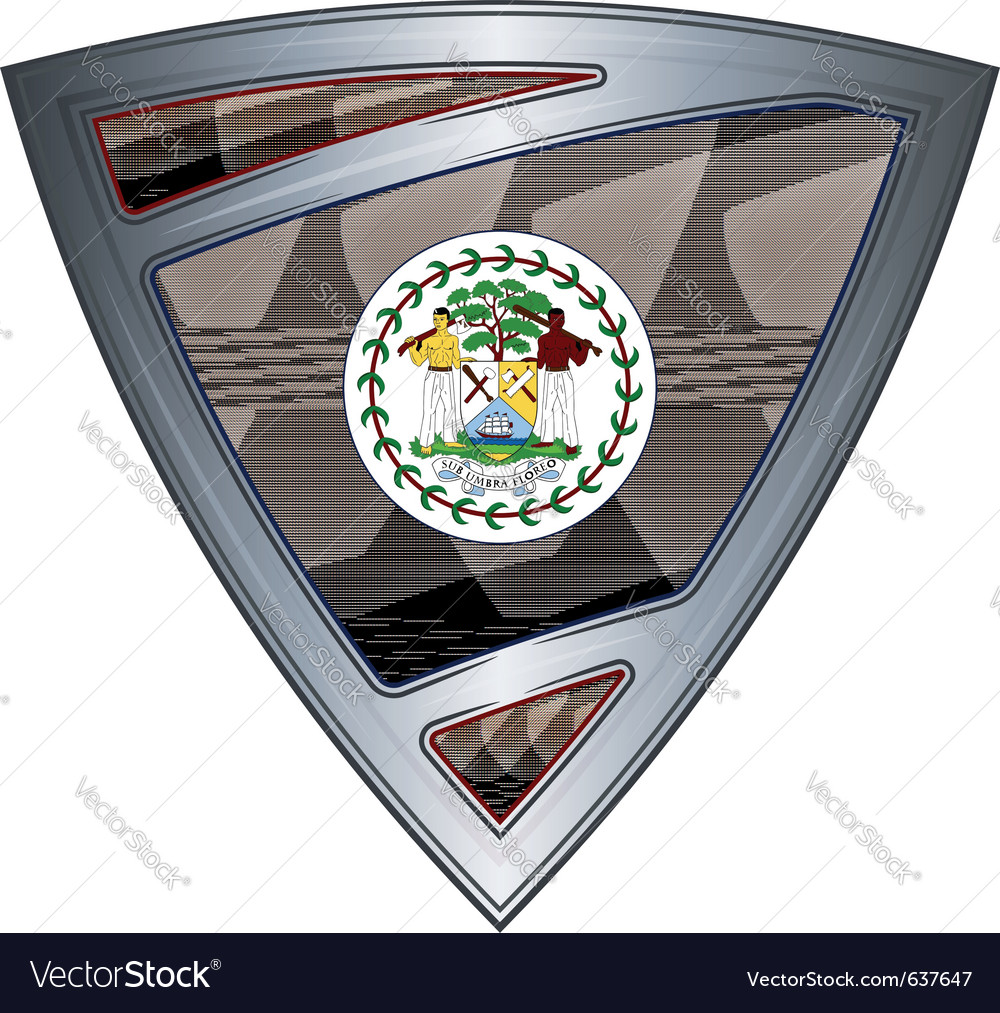Steel shield with flag belize vector