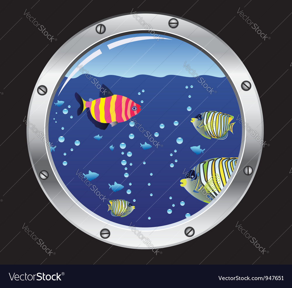 Porthole and colorful fishes vector | Price: 1 Credit (USD $1)