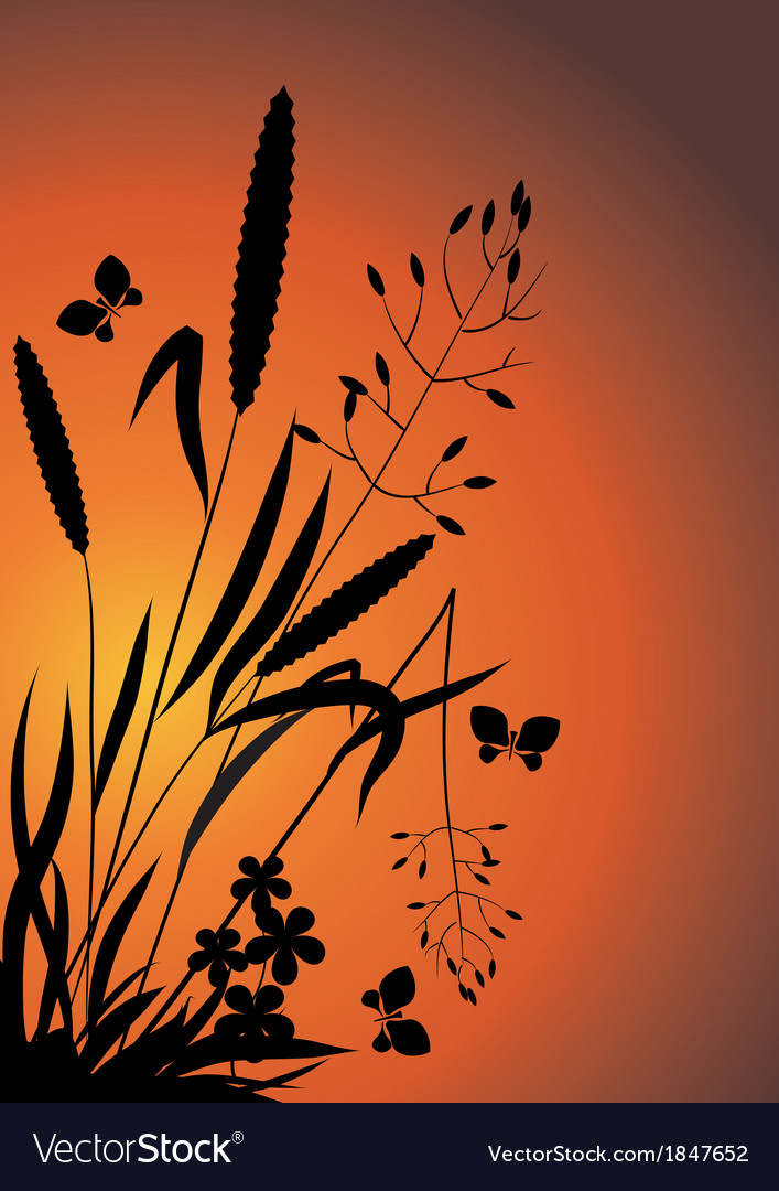 Wildflowers in the evening vector | Price: 1 Credit (USD $1)