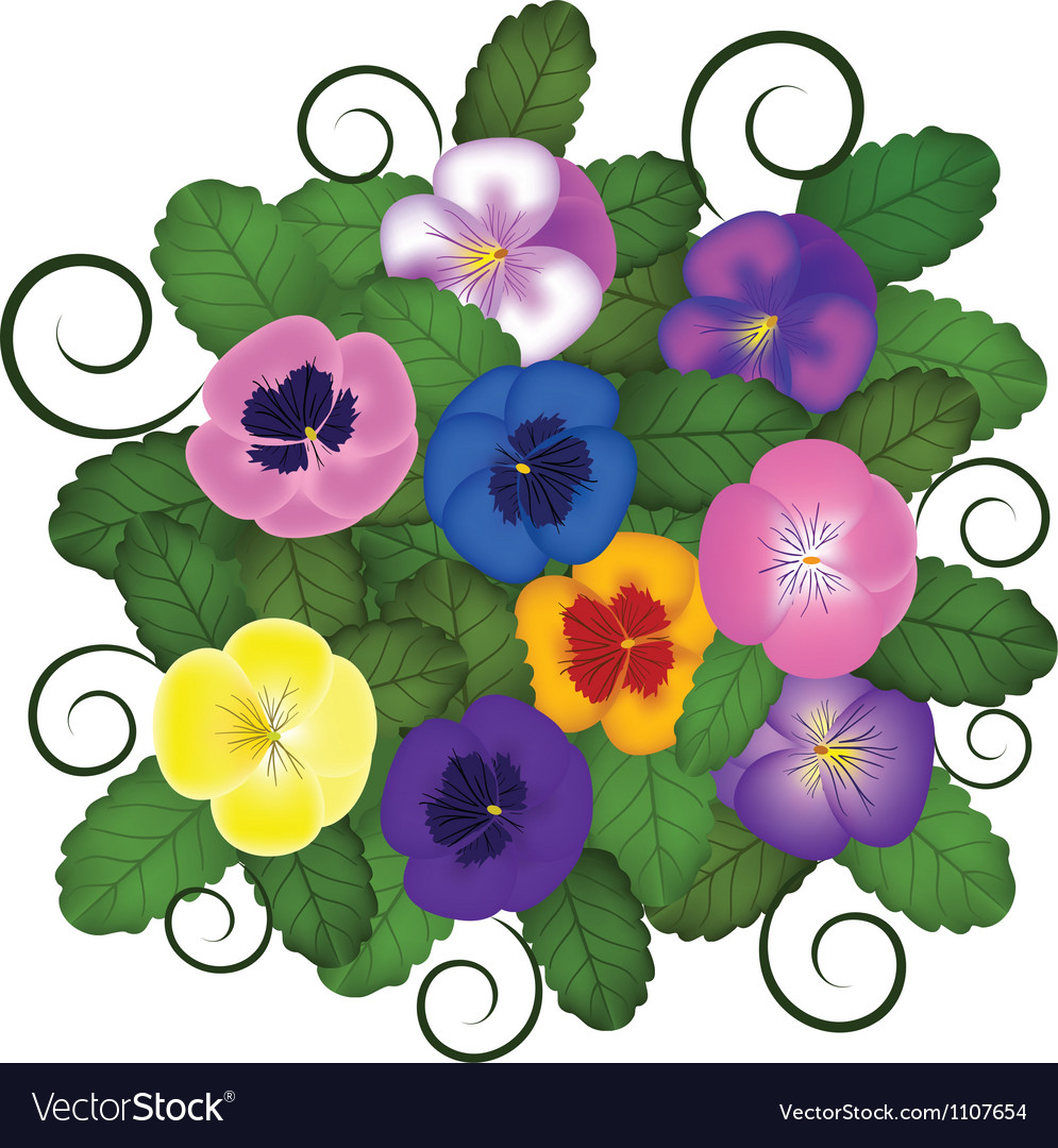 Pansies bouquet vector | Price: 1 Credit (USD $1)