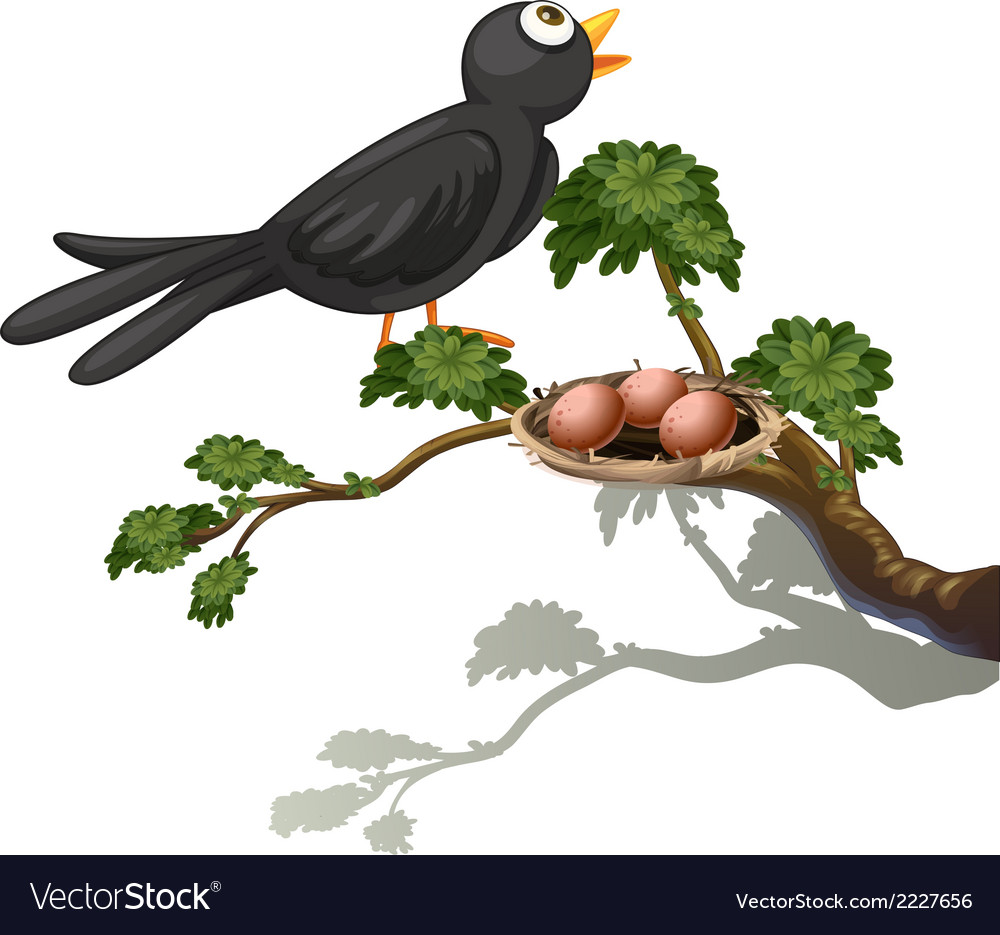 A black bird at the branch of a tree with a nest vector | Price: 1 Credit (USD $1)