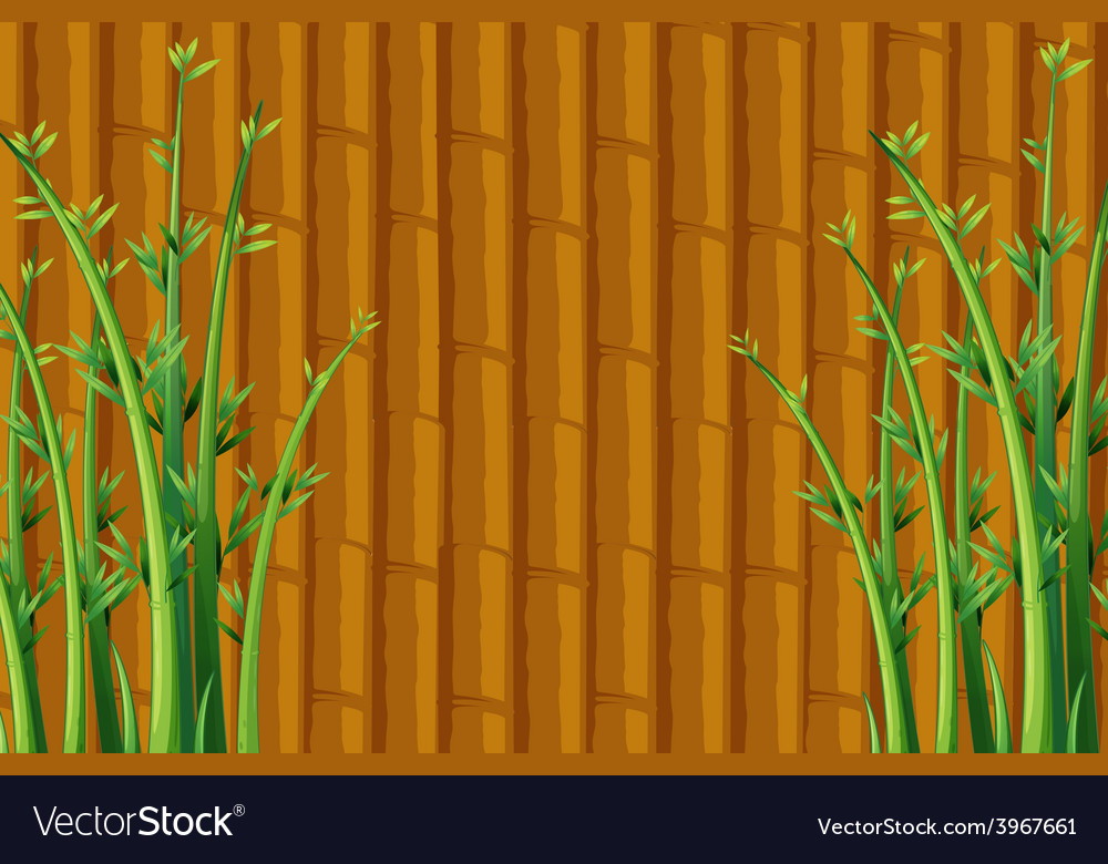 Bamboo vector   Price: 1 Credit (USD $1)