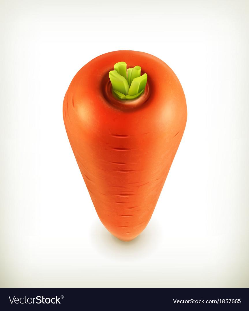 Carrots icon vector   Price: 1 Credit (USD $1)