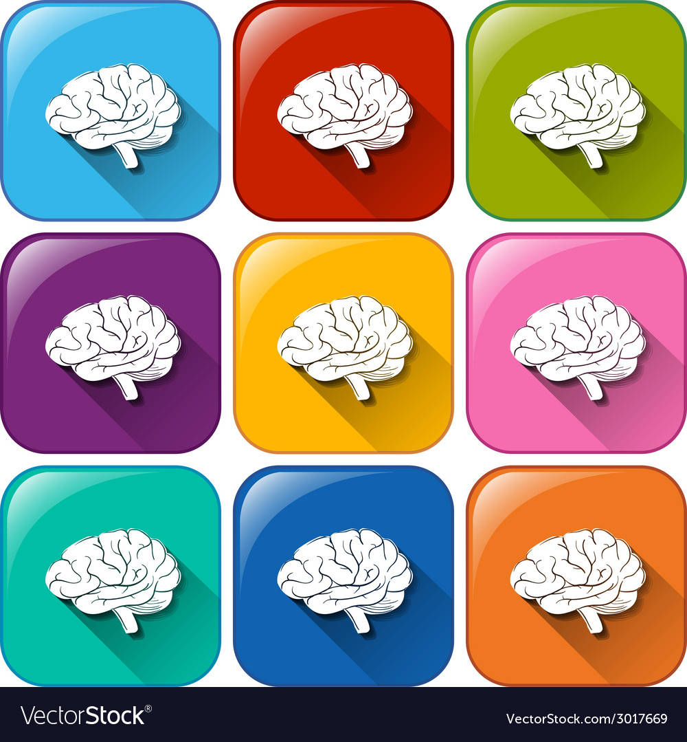 Buttons with brain organ vector | Price: 1 Credit (USD $1)