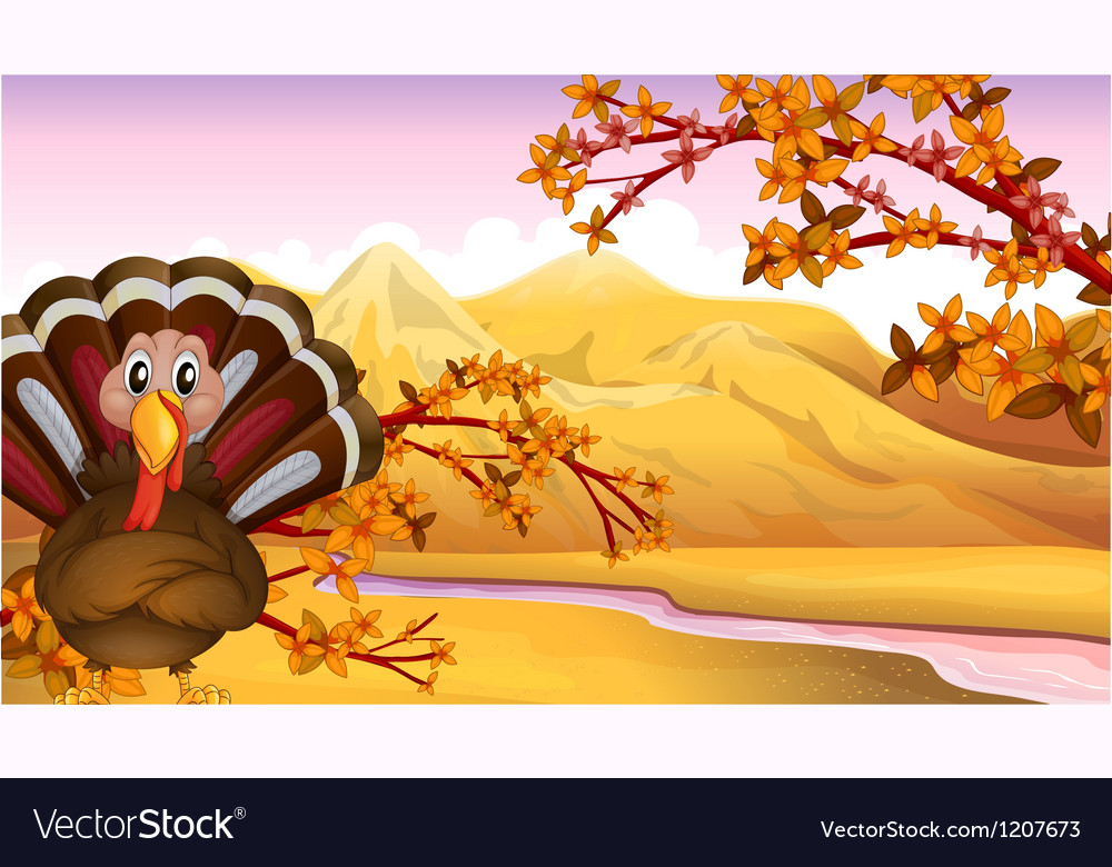 Autumn turkey vector | Price: 1 Credit (USD $1)