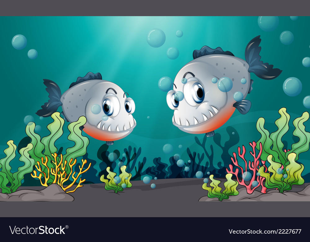Two big grey fishes under the sea vector | Price: 1 Credit (USD $1)