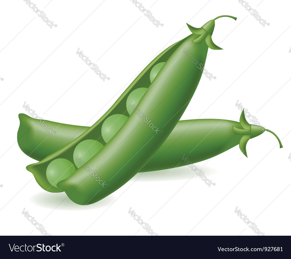Peas object vector | Price: 1 Credit (USD $1)