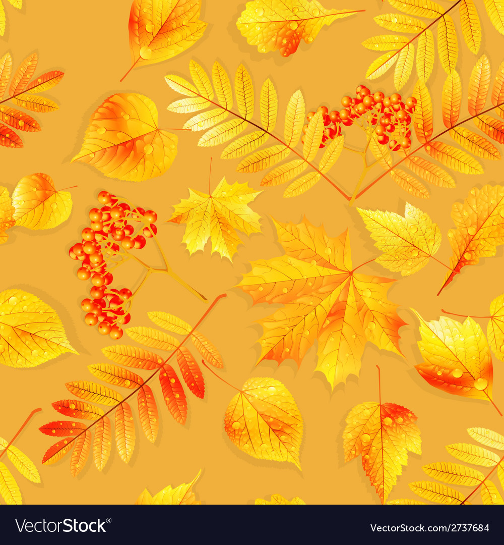 Swatch ready detailed seamless wet leaves vector | Price: 1 Credit (USD $1)