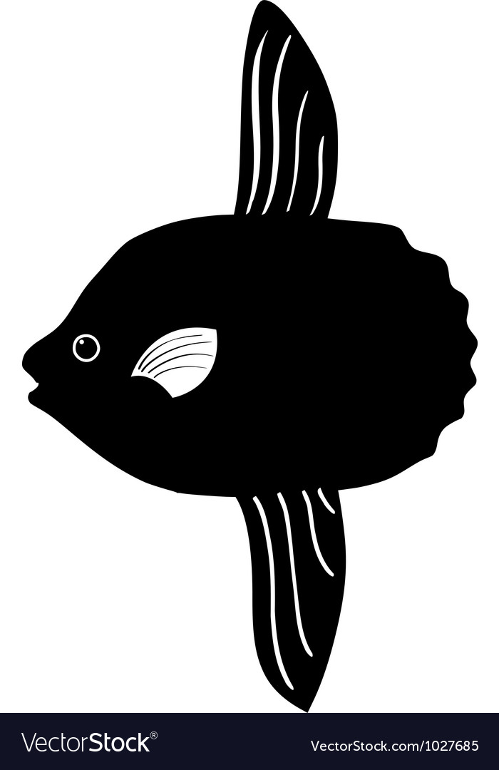Silhouette of sunfish vector | Price: 1 Credit (USD $1)