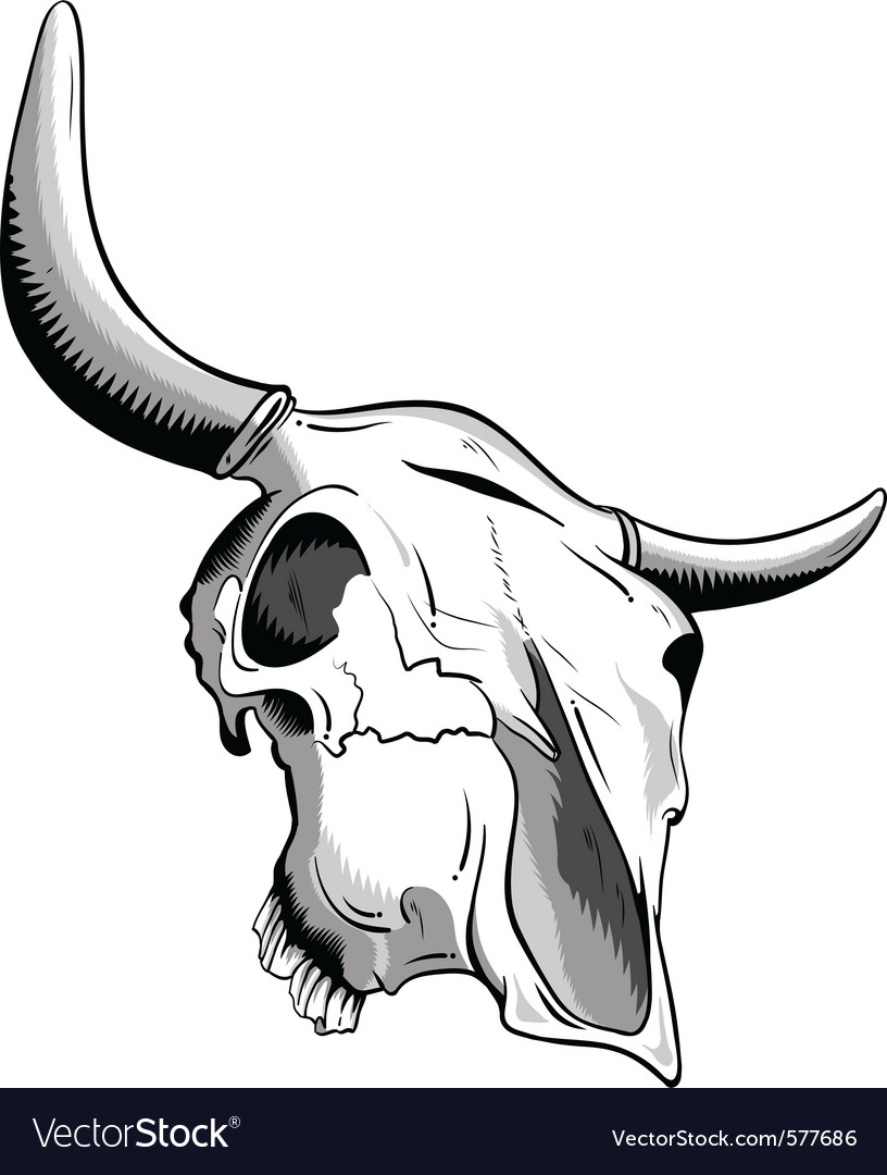 Animal skull vector | Price: 3 Credit (USD $3)