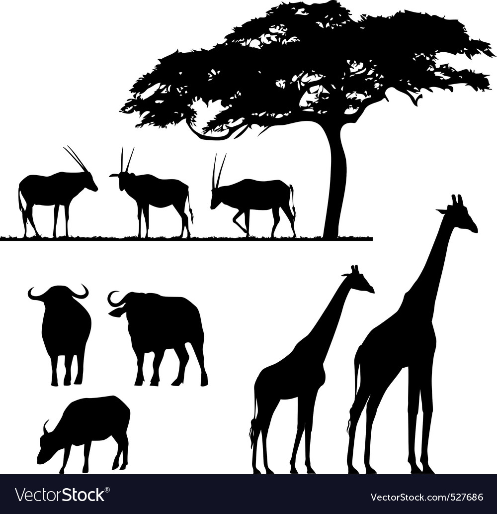 N animals vector silhouettes vector | Price: 1 Credit (USD $1)