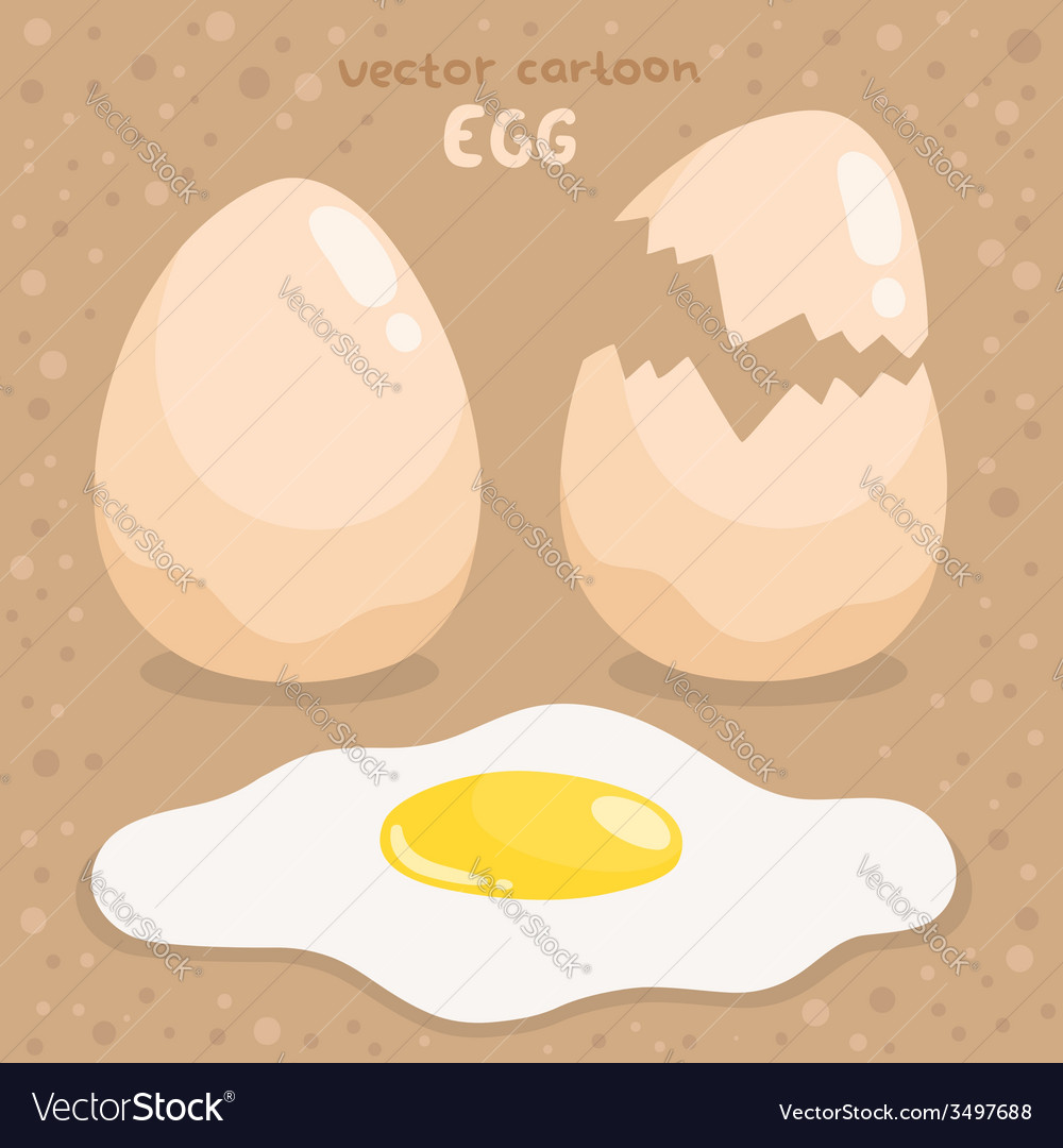 Cartoon broken and fried egg vector