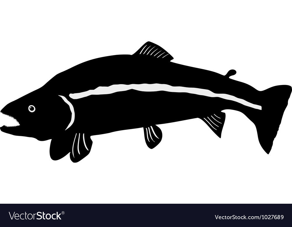 Silhouette of trout vector | Price: 1 Credit (USD $1)