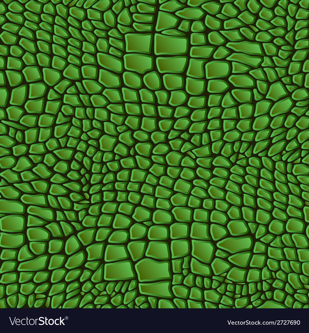 Leather animal snake textures reptile crocodile vector | Price: 1 Credit (USD $1)