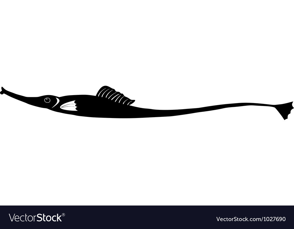 Silhouette of needlefish vector | Price: 1 Credit (USD $1)