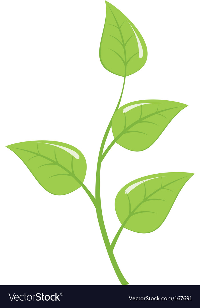 Young sapling vector | Price: 1 Credit (USD $1)