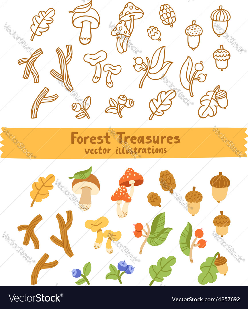 Forest treasures vector | Price: 1 Credit (USD $1)