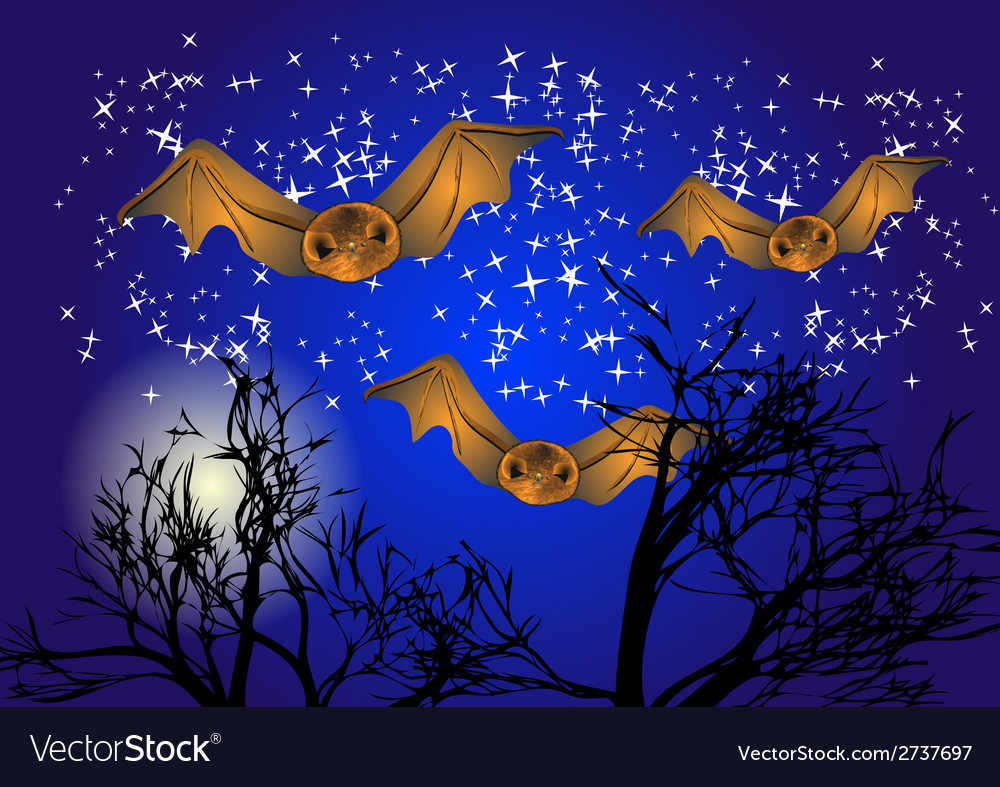 Bats in night sky vector | Price: 1 Credit (USD $1)