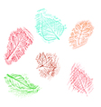 Pencil drawing of leaves vector