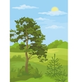 Summer landscape with trees and blue sky vector