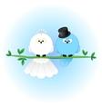 Stylish bride groom birds vector