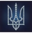 Coat of arms of ukraine vector