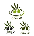 Colorful olive set vector