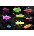 Plastic bugs vector
